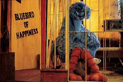 pinonest, bluebird of happyness, hoofdzaken, angst, voorlezen